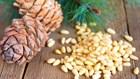 Кедровый орех по выгодным ценам