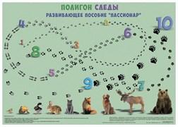 """""""Полигон следы"""""""