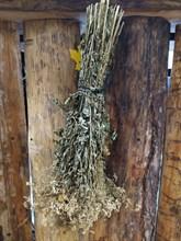 Травяной веник Таволга - фото 12883