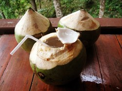 Масло кокосовое 300г - фото 6298
