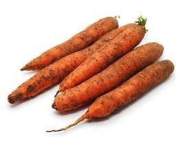 Морковь 1кг - фото 8416