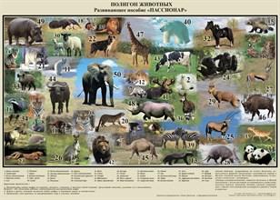 """""""Полигон животных"""" - фото 8990"""