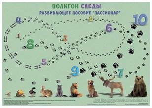 """""""Полигон следы"""" - фото 8991"""