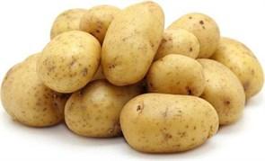 Картофель БИО Кубань 1кг