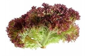 Салат красный 1кг