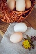 Яйцо куриное фермерское  Александровская слобода 10шт ❄️