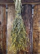 Травяной веник Донник