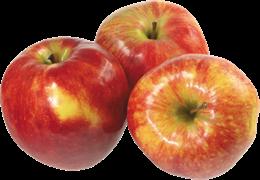 Яблоки Богатырь 1кг