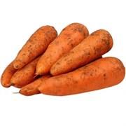 Морковь БИО 1кг